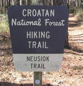 Backpacking / Croatan National Forest Neusiok Trail